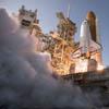 STS-133: Orvosbiológiai kutatások a Discovery utolsó küldetése alatt