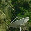 MEGFEJTÉS: Felfelé nézõ antennák