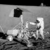 Csak legenda a holdutazást túlélõ baktériumok története