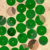 Zöldellõ sivatag – fogyó víztartalék