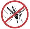 Környezetbarát szúnyogirtás